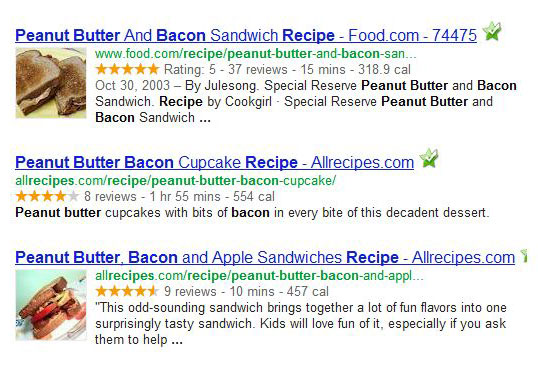 Rich snippets search results