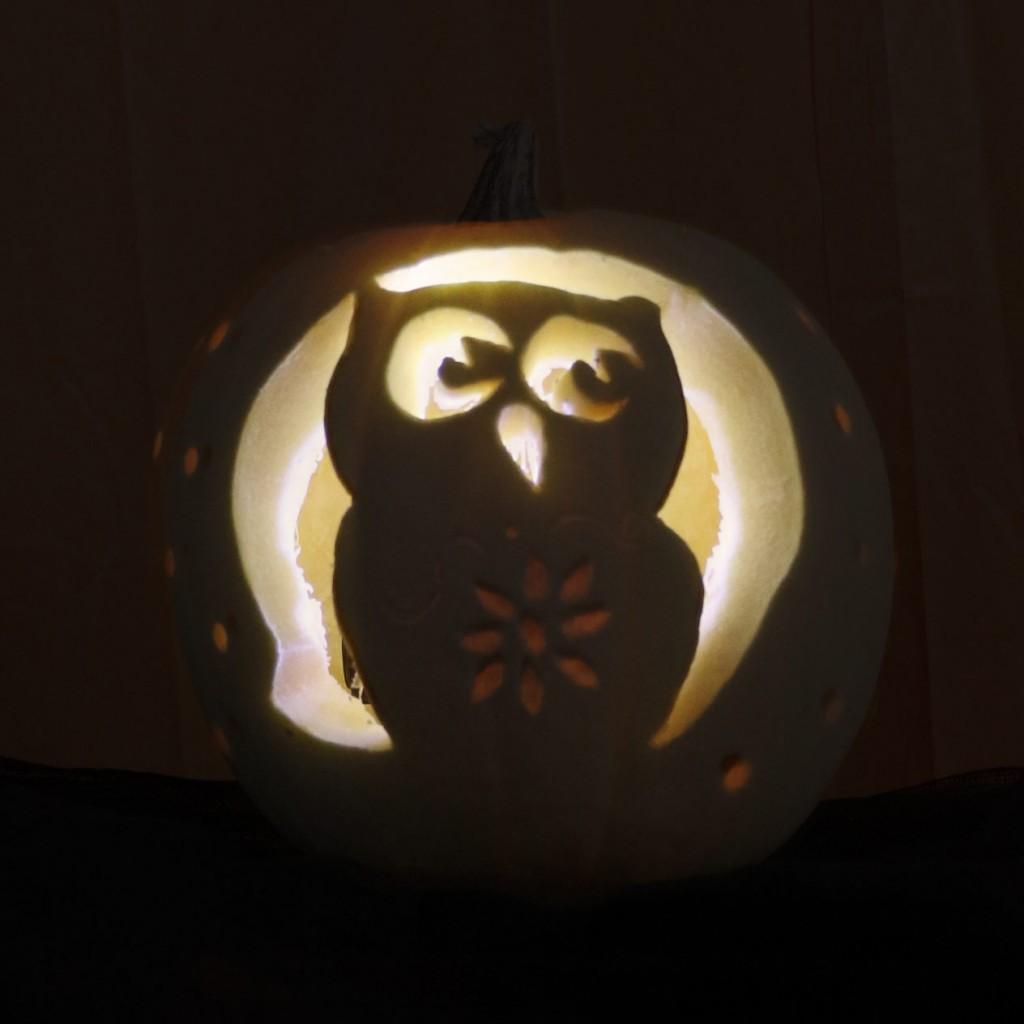 Cynthia-Owl-Lit