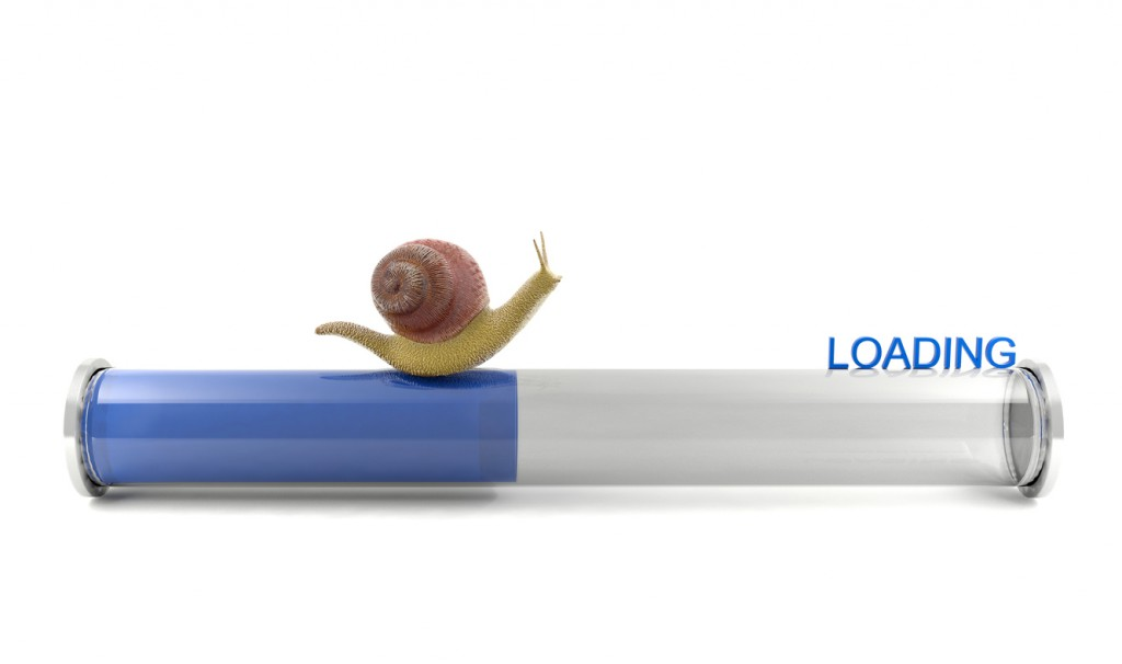 Snail crawling on download bar